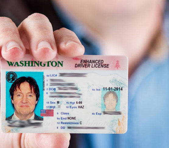 Buy Driver License Online